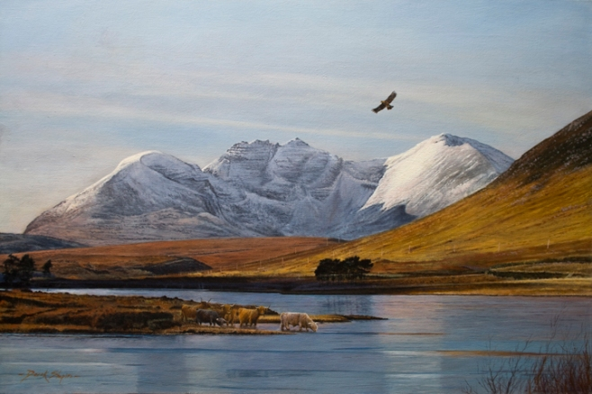 'An Teallach and Little Loch Broom' Cattle Watering'