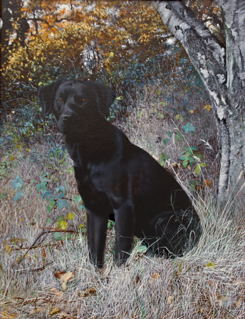 'Ready and Alert' Oil on canvas 16 x 12 ins
