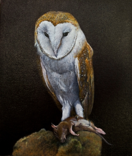 Barn Owl with Prey