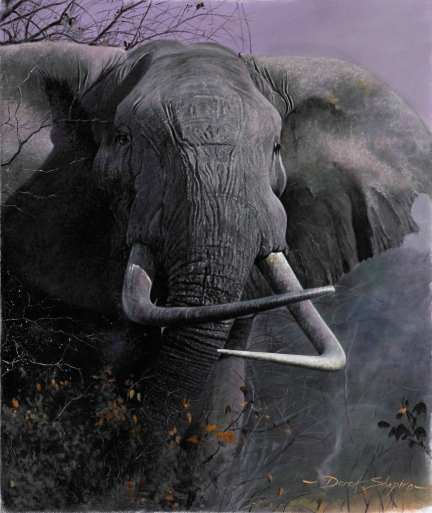 'Confrontation' Oil on canvas painting of an African bull elephant