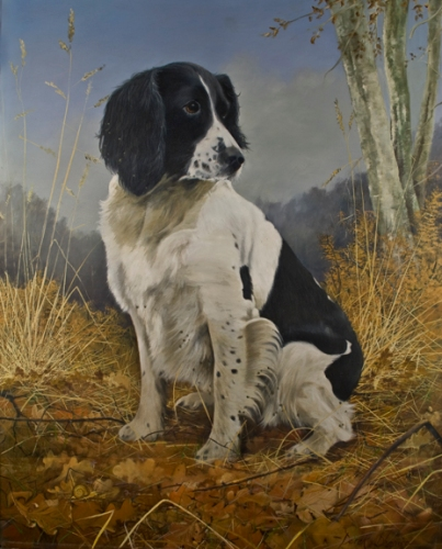 An oil portrait painting of an English Springer Spaniel working dog.