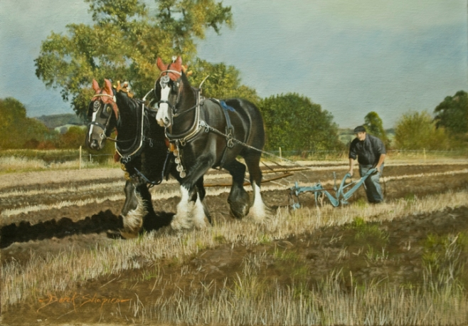 The Ploughing Match