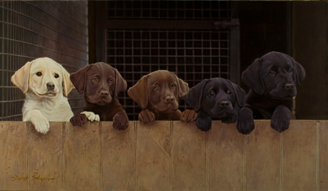 A painting of a yellow, two chocolate and two black Labrador puppies looking over the top of a kennel partition