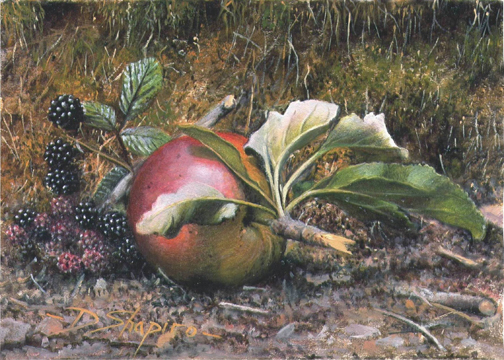 'Study of a Fallen Apple' Oil on panel 5 x 7 ins a Still life painting of a windswept apple with blackberries