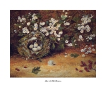 Artist signed lithograph print of a birds nest with Hawthrne blossom on a mossy ground