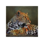 Limited Edition Print of a Leopard taken from the original oil painting on canvas by Derek Shapiro