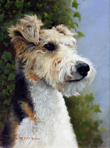 'Alfie'  Oil on canvas 10 x 8 ins