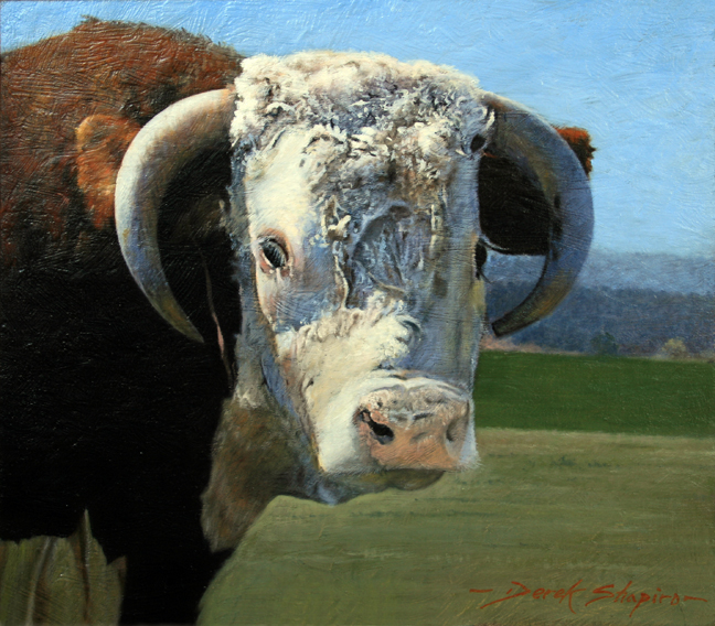 An oil painting study of a Hereford bull
