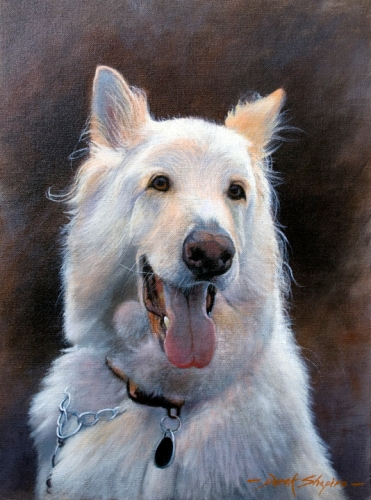 An oil portrait painting of a white Alsation