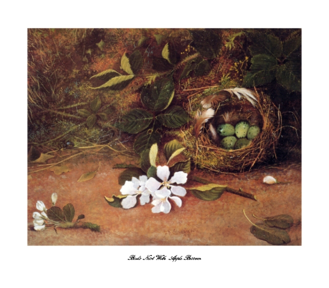 Artist signed lithograph print of a birds nest with apple blossom on a mossy ground