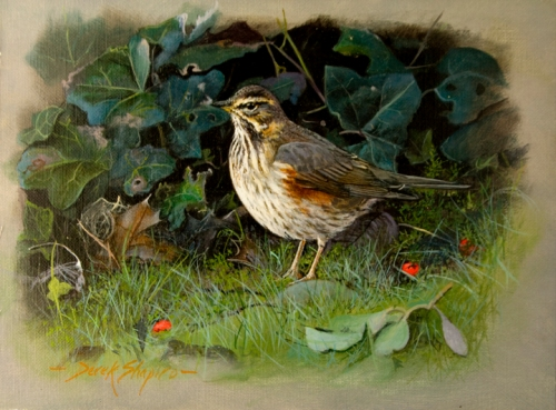 The Redwing