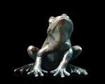 Bronze study of an alert sitting frog