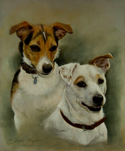 Portrait head study of two Jack Russell dogs