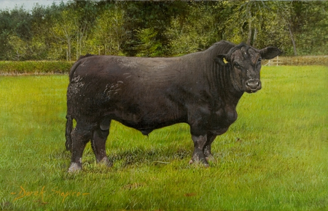 An oil painting on canvas of an Angus bull standing in a field