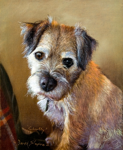 An oil painting of a Border Terrier standing with it's front legs on a chair, looking out