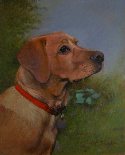 An oil painting of a light coloured Red Fox Labrador dog