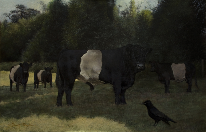 An oil painting of a Galloway Bull along with Galloway cows in pasture land with a Crow standing in the foreground