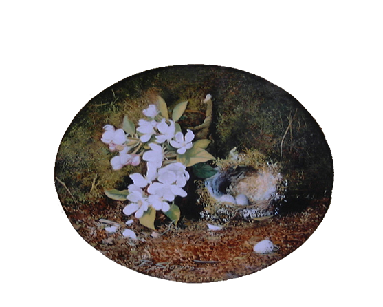 An oval oil painting on a panel of a birds nest with a sprig of Apple Blossom with a mossy background