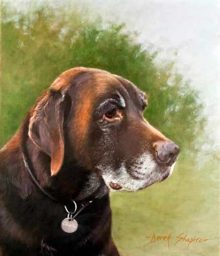 An oil on canvas painting of an old retired working chocolate labrador dog