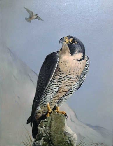 an oil painting of a bird of prey perched on a rock