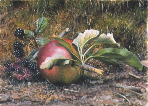 A still life painting of a fallen apple and blackberries on a natural ground and a mossy background